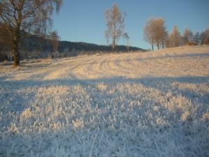 Snøen mangler, de par cm som har kommet, kan ikke brukes til noe - men gjør det i alle fall lyst og vakkert