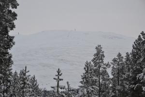 Nesten uansett hvor vi befinner oss i området, ser vi glimt av Tronfjell. Her fra Fosåsen