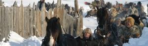 Her kommer hesteekvipasjene inn til åpningen av martnan et tidligere år
