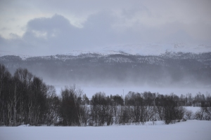 Snøfokk