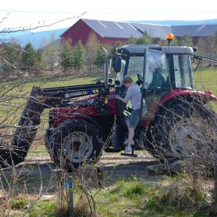 Hjelpejente på traktor!