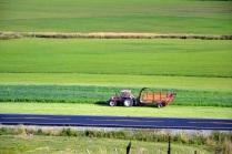 September: Innhøsting