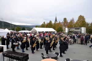 Dyktige Alvdal-Tynset janitsjarkorps med god takt og tone