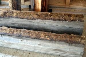Tømmerstokkene som var under vinduet ble fjernet. Se den flattrykte mosen som ligger på stokkene og som ble brukt som isolasjon.