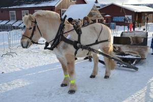 Fin fjording klar for sledetur