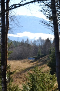 Mellom trærne får vi stadig øye på fjellene fra litt andre retninger enn vi er vant til.
