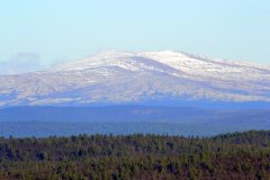 Snødekte topper i det fjerne mot nord. Jeg vet ikke hva fjellet heter, kan det være Nonsvola i Tolga kommune, 1089 moh?