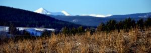 Alvdal Vesfjell lyser fortsatt kritthvitt av snøen, mens det i bakken hos oss stikker tørre, brune gresstuster opp