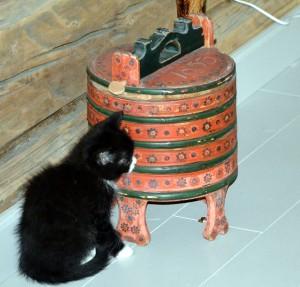 For anledningen har kattungen satt seg ved grøtdylla vår, som er datert 1853 og har tilhørt Barbro Andersdatter Storeggen.
