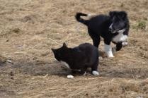 Bjørk og Gudleik elsker å erte hverandre, men er også blitt bestevenner, i alle fall av og til
