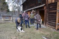 Venner på besøk fra Asker og Bærum, ble i fjor vår tatt med på venners gård for å se på nyfødte lam. Her utenfor lammefjøset.