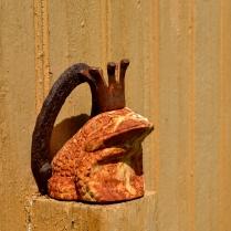 Frosk med krone sitter på veggen utenfor