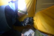 Bjørk vil gjerne sove inne i teltet sammen med oss. Imidlertid fant hun det for godt å bade rett før vi gikk til sengs, og dermed måtte hun sove i forteltet.