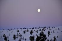 Månen stråler fortsatt ganske full i vinternatten