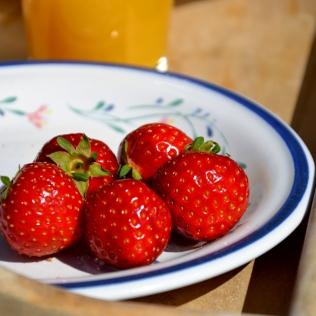 De norske jordbærene er enda bedre i år enn vi husker dem - og vi fråtser!